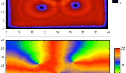 Quantum Vortices