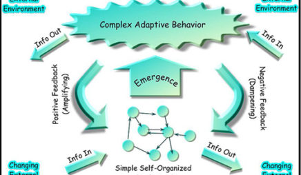 Complex Adaptive Behavior