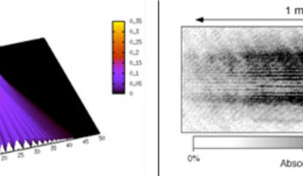 Interfering Bose-Einstein Condensates