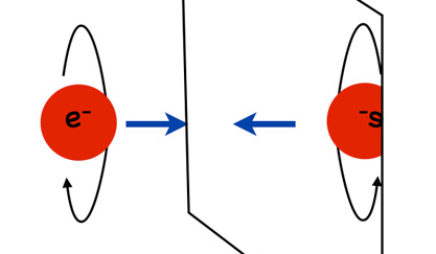 For the weak force, an electron's mirror image is a different type of object.
