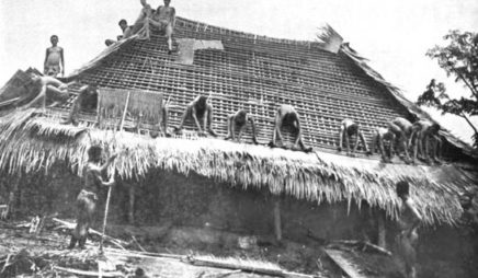 Igbo men thatching the roof of a house