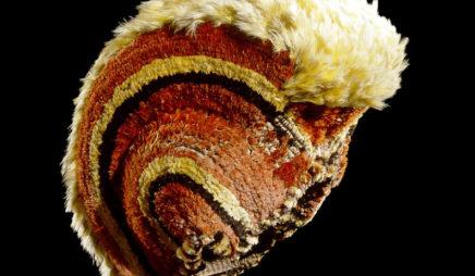 Feathered helmet (mahiole)