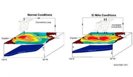 Normal and El Niño conditions